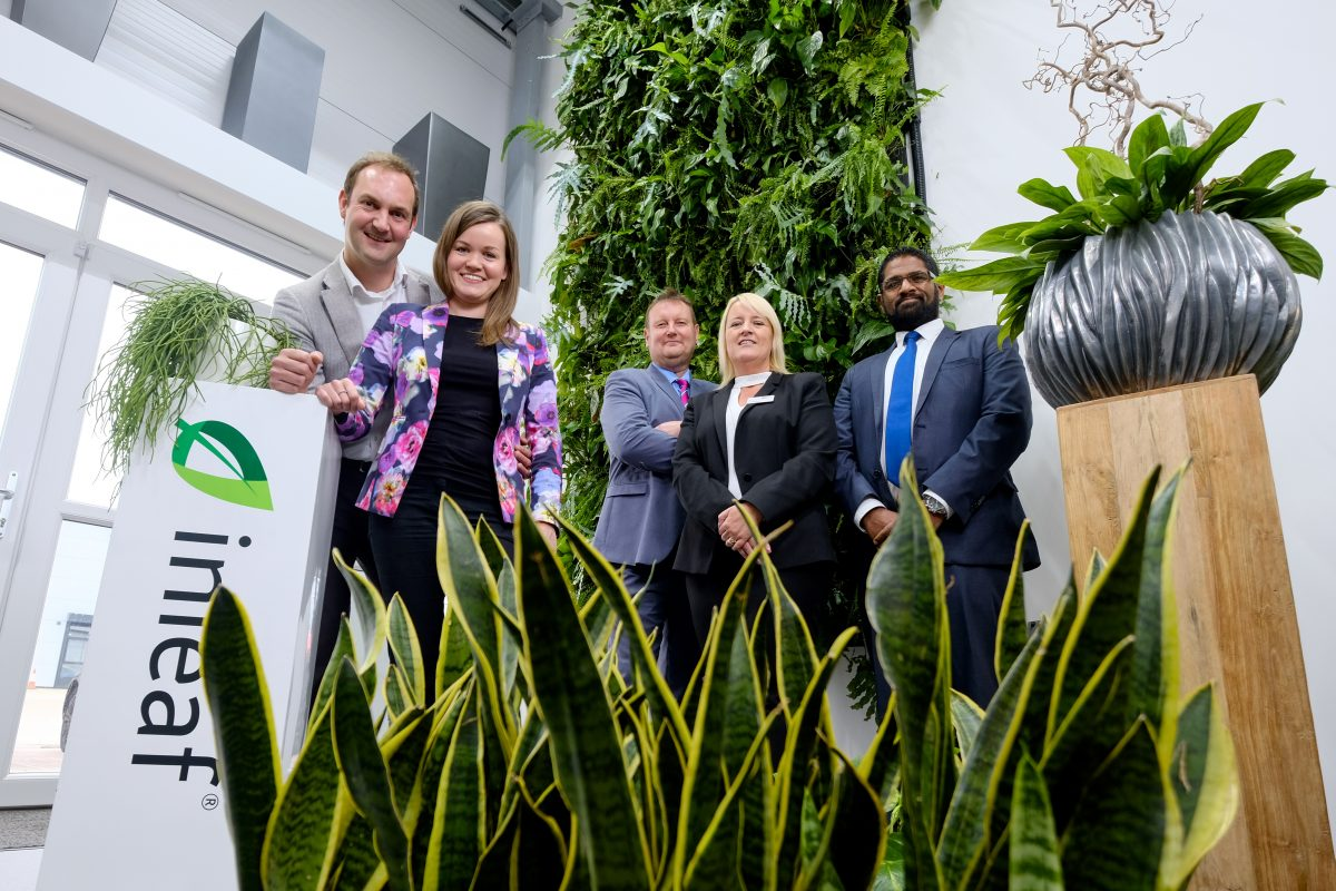 Green shoots of growth for office plant specialists with backing from the Northern Powerhouse Investment Fund